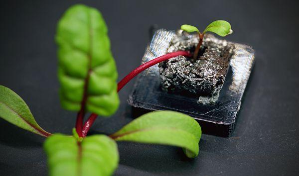 3D打印植物培养容器